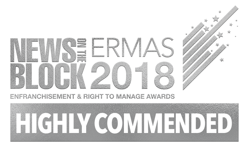 Highly Commended - Young Professional of the Year - The ERMAs 2018