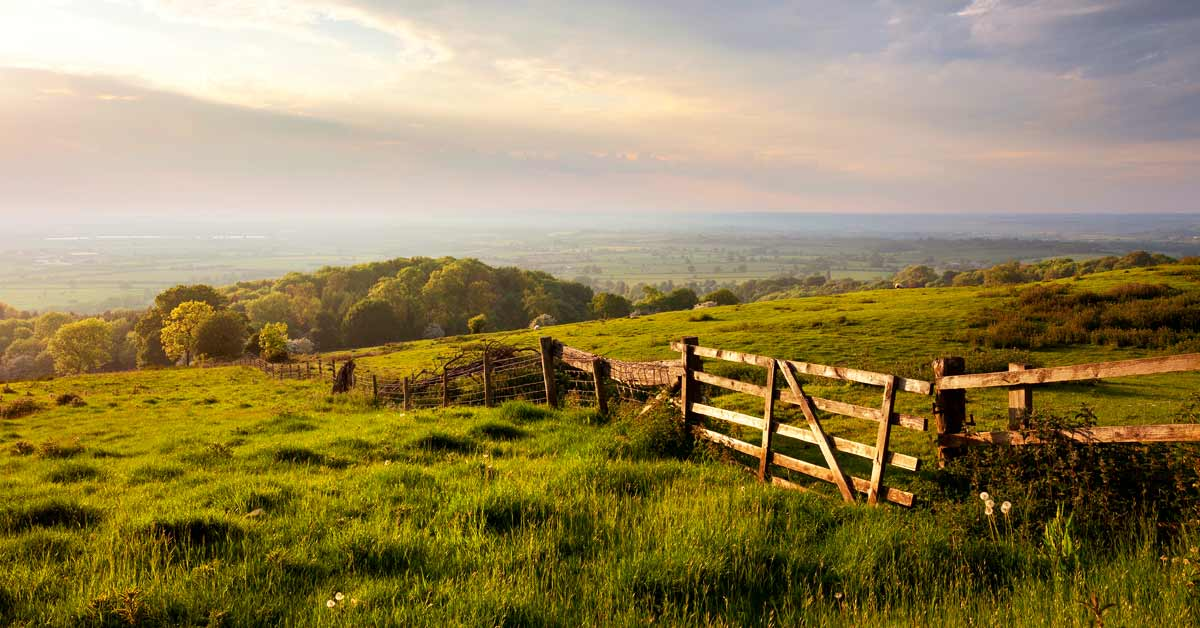 The Countryside Strikes Back – crucial considerations for moving to the country