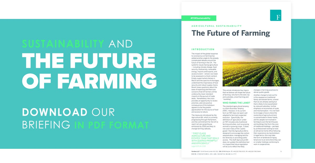 Click here to download our briefing in PDF format
